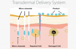 transdermal-delivery-system