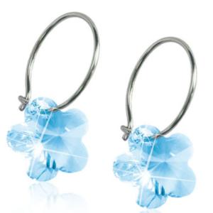 Medical Titanium Sleepers Flower Aquamarine Earrings